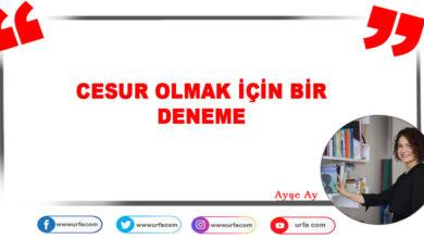 Photo of CESUR OLMAK İÇİN BİR DENEME