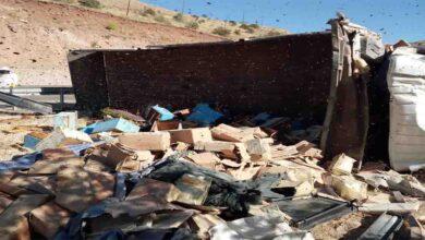 Photo of Arı kovanı yüklü kamyon devrildi: 3 ölü