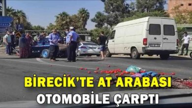 Photo of Birecik'te at arabası otomobile çarptı