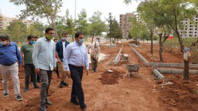 Photo of Haliliye'de park alanları denetlendi