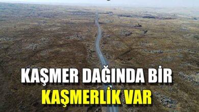 Photo of Kaşmer Dağı'nda bir kaşmerlik var