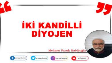 Photo of İKİ KANDİLLİ DİYOJEN