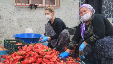 Photo of Bu Kadın Urfa'da Mahallenin Patronu Oldu