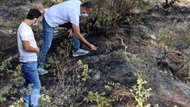Photo of Ormanlık Alanda Yanmış Erkek Cesedi Bulundu