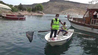 Photo of Büyükşehir'den halfeti'de marina temizliği
