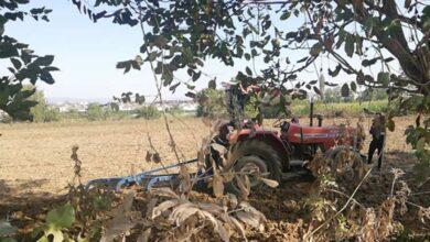 Photo of Sulamaya Giden Adam Silahlı Saldırı Sonucu Öldü