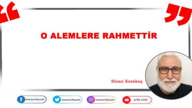 Photo of O alemlere rahmettir