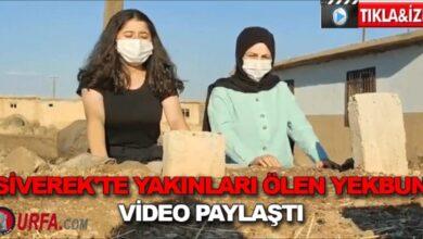 Photo of Siverek'te yakınları ölen Yekbun video paylaştı
