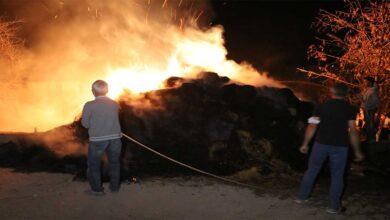 Photo of Ahır yangınında büyükbaş hayvanlar telef oldu