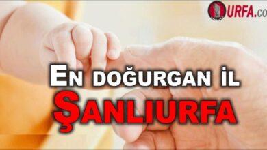 Photo of En doğurgan il Şanlıurfa