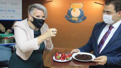 Photo of Urfa'nın acısı İrlanda Büyükelçisini yaktı