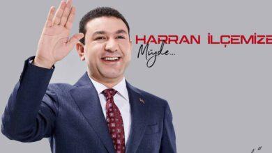 Photo of Özyavuz, Harran'a Sağlıklı İçme Suyu Müjdesi Verdi