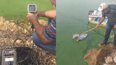 Photo of Urfa'da Barajı'daki Su Kirliliğini Araştırılıyor