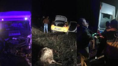 Photo of Koyunlar Ölüm Getirdi! 2 Ölü 2 Yaralı