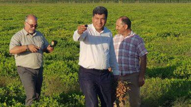 Photo of Harran Ziraat Odası Başkanı Show Tv'ye Konuk Oldu