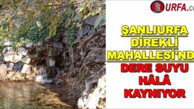 Photo of Urfa'nın Direkli mahallesi'nde dere suyu hâlâ kaynıyor
