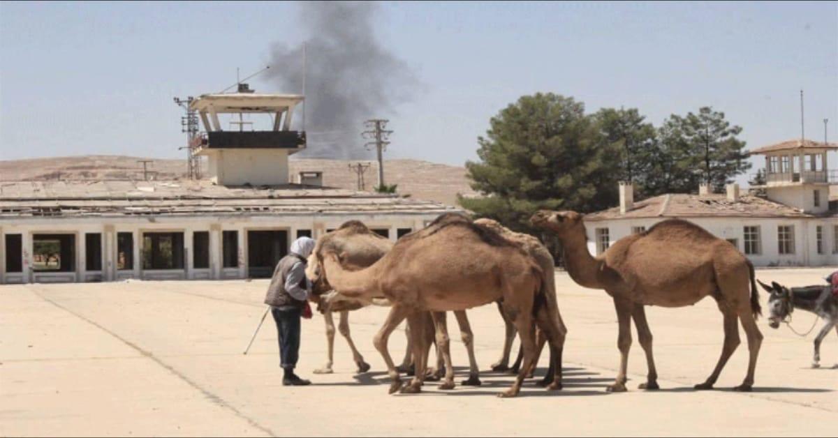 urfa deve merkezi