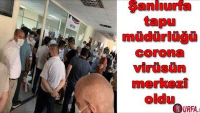Photo of Şanlıurfa tapu müdürlüğü coronavirüsün merkezi oldu
