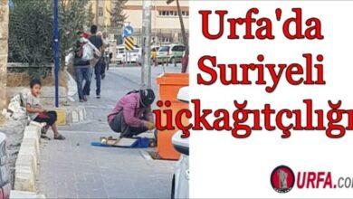 Photo of Urfa'da Suriyeli üçkağıtçılığı !