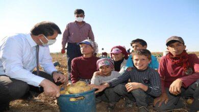 Photo of Urfa'lı tarım işçisi çocuklar için çadırda eğitim