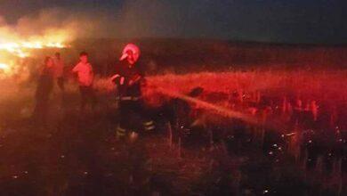Photo of Şanlıurfa'da mısır tarlasındaki yangın korkuttu