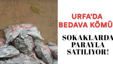 Photo of Urfa'da bedava kömür sokaklarda parayla satılıyor