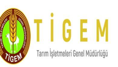 Photo of Ceylanpınar TİGEM kura sonucu açıklandı