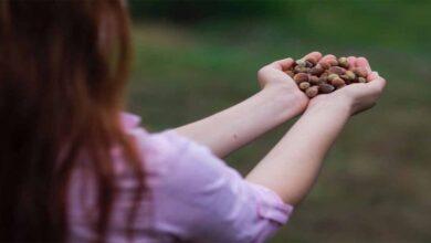 Photo of Çocuk işçiliğini ortadan kaldırmayı hedefleniyor