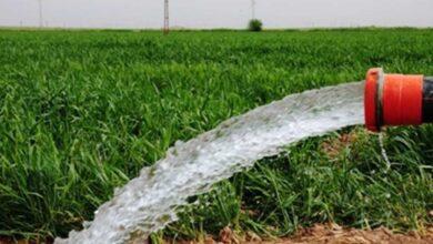 Photo of DEDAŞ'tan Çiftçilere Uyarı: Borçlarınızı Ödeyin