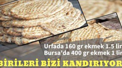 Photo of Urfada 160 gr ekmek 1.5 TL Bursa'da 400 gr ekmek 1 TL