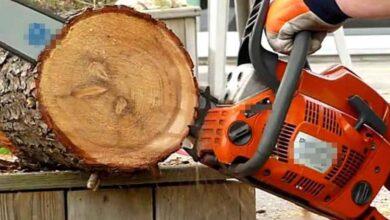 Photo of Testere İle Odun Yerine Ayağını Kesti