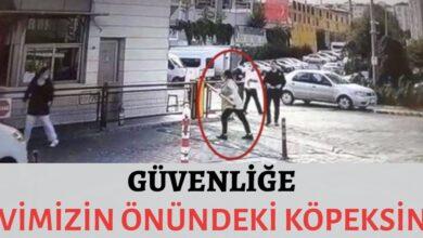 """Photo of Güvenliğe,"""" Evimizin önündeki köpeksin!"""