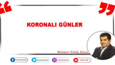 Photo of Urfa.com Yazarı Koronavirüse Yakalandı