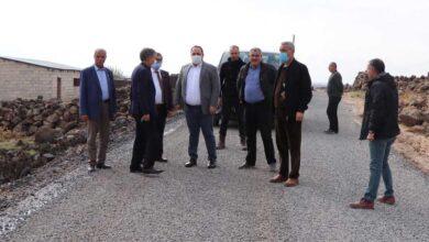 Photo of Viranşehir'de Asfalt Çalışmaları Devam Ediyor