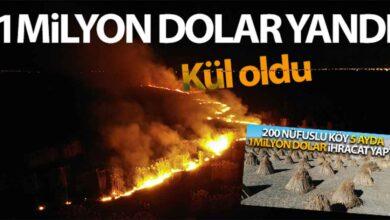 Photo of 1 milyon dolar yanarak kül oldu