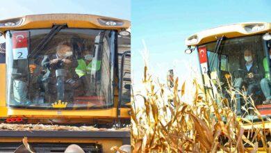Photo of Bakan Soylu Urfa'da biçerdöverle mısır hasadı yaptı