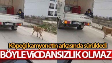 Photo of Köpeği kamyonetin arkasında sürükledi