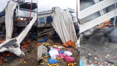 Photo of Meyve yüklü kamyon şarampole uçtu: 2 ölü 2 yaralı