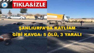 Photo of Şanlıurfa'da katliam gibi kavga: 5 ölü, 3 yaralı