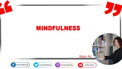 Photo of Mındfulness