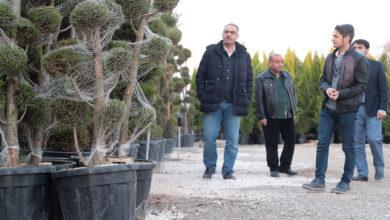 Photo of Eyyübiye'deki Parklara Farklı Tür Ağaçlar Dikilecek