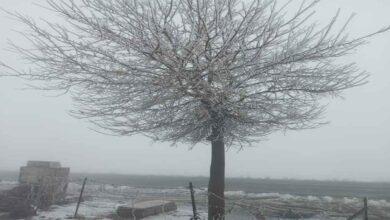 Photo of Şanlıurfa'da Kar ve tipi sürücülere zor anlar yaşattı