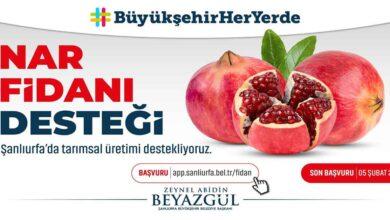 Photo of Şanlıurfa'da üreticiye nar desteği