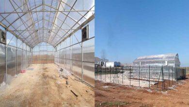 Photo of Şanlıurfa'da sebze ve meyve kurutma tesisi
