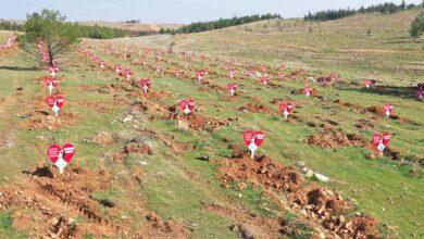 Photo of Şanlıurfa'da Evlenen Çiftlere ömürlük hediye