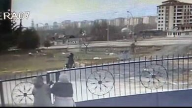 Photo of Sokak köpeklerinin saldırdığı kadın yaralandı