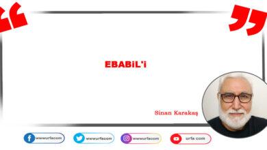Photo of Ebabil'i