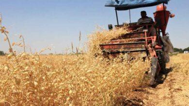 Photo of Tarımsal sulamada 'su tasarrufu' teşvik edilecek