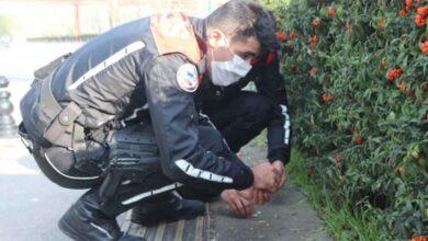 Photo of Polis yoldan tek tek uyuşturucu topladı