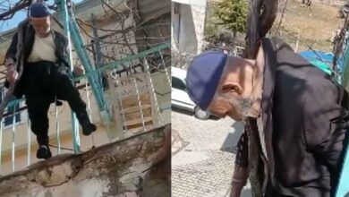 Photo of Yaşlı adam çıktığı ağaçta asılı kaldı
